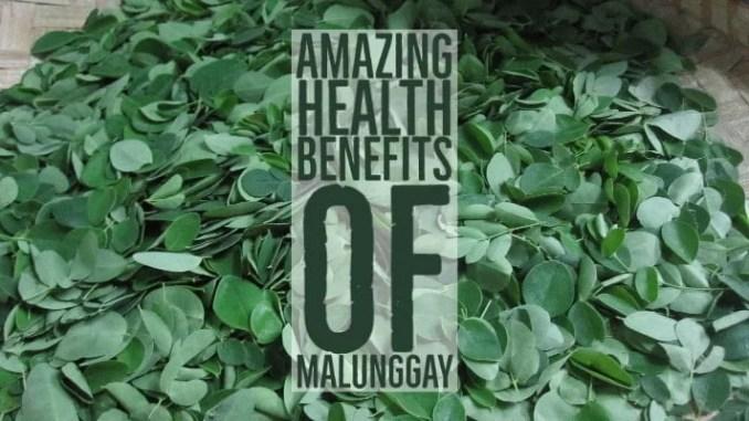 Amazing Health Benefits Malunggay