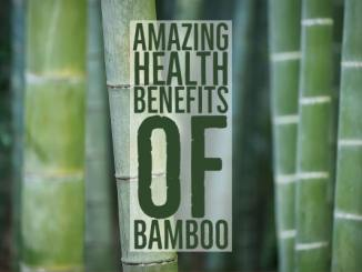 Amazing Health Benefits Of Bamboo