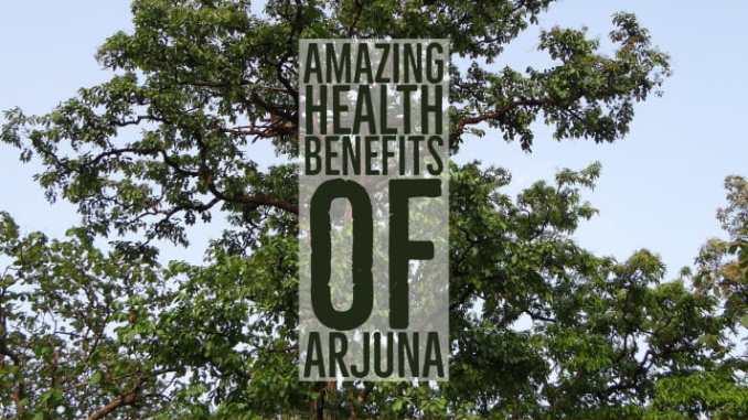 Amazing Health Benefits Arjuna