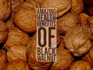 Amazing Health Benefits Black Walnut