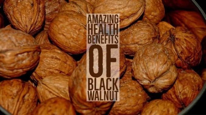 Amazing Health Benefits Black Walnut
