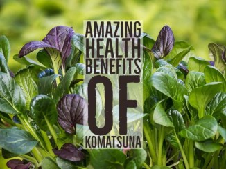 Amazing Health Benefits Komatsuna