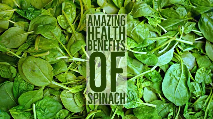 Amazing Health Benefits Spinach