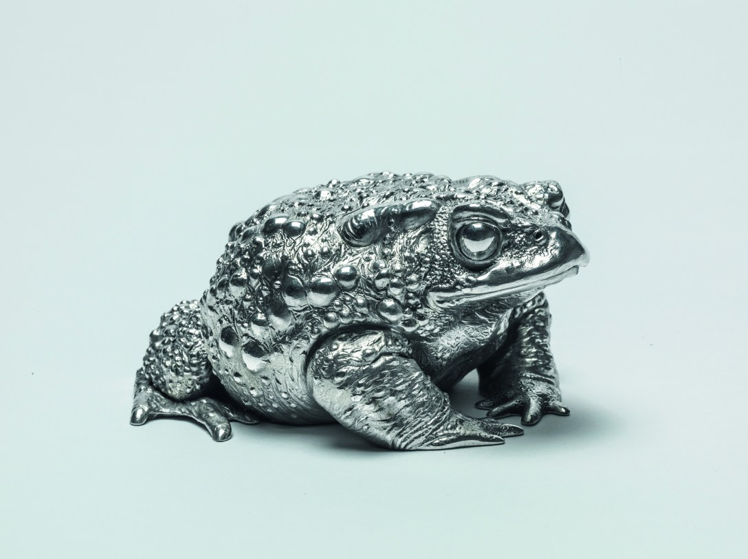 Toad 'Sculpture' by Nick Bibby 'Cast' in 'Silver' by Pangolin Editions
