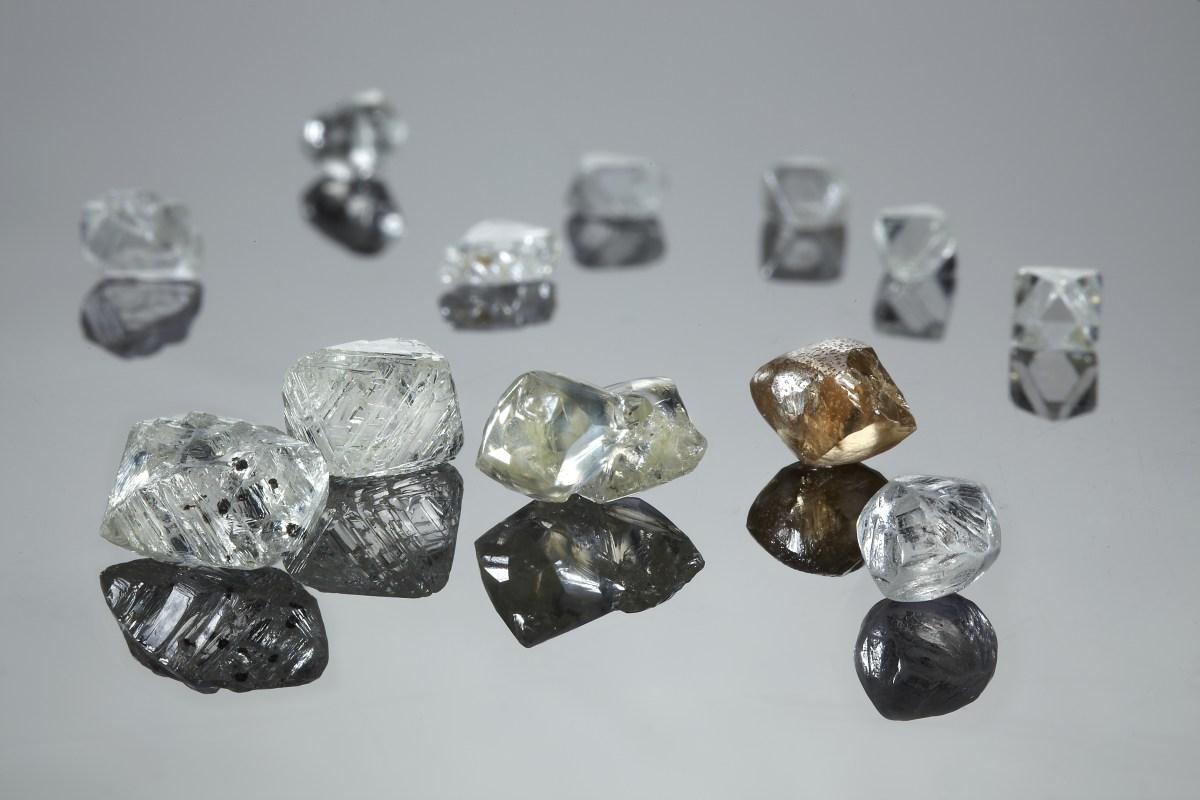 pangolin diamonds a diamond