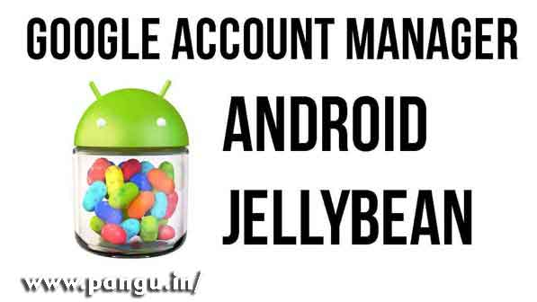 Google Account Manager 4 4 2, 4 2 1, 4 2, 4 1 1 Jellybean