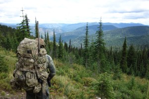 Panhandle Precision Fall Bear Hunting in Idaho