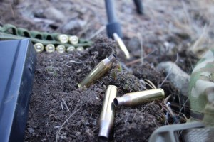 260 Remington Empties