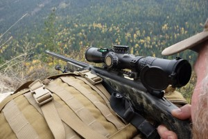 1350 Yard Shot with 260