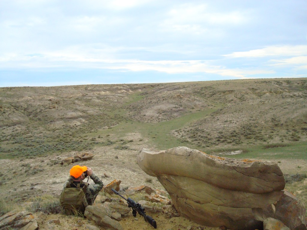 glassing coulees