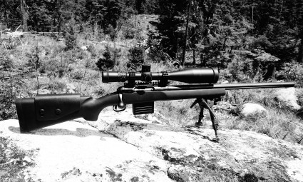 Savage Model 12 LRP 260 Remington