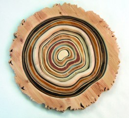 This piece uses salvaged wood to create a tree cookie and a fragmented sense of time.