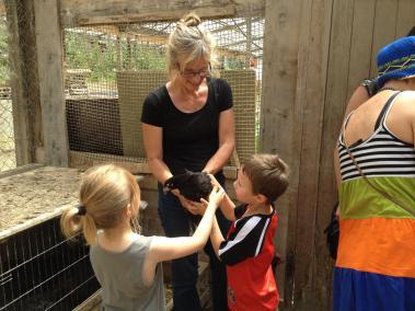 poules-enfants-asclepiades