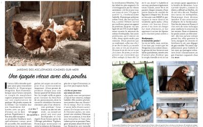 #OptimisteCôted'Azur : une épopée vécue avec des poules
