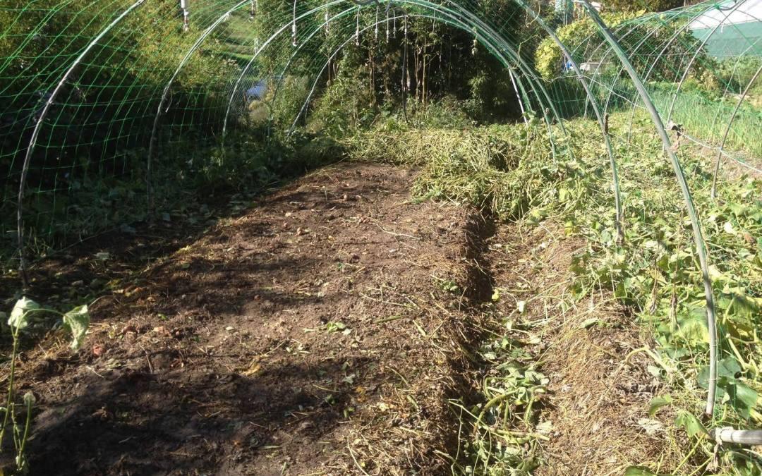 Sam 13/06 : Mise en forme du terrain pour les plantations d'été