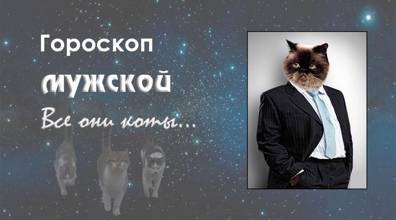 Мужской гороскоп — Все они коты…