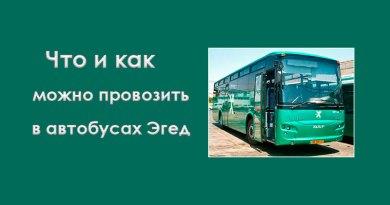 Что и как можно провозить в автобусах «Эгед»