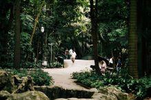 São Paulo- park Siqueira Campos