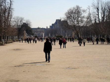 Jardin des Tuileries- parkowe aleje, w tle budynki Luwru