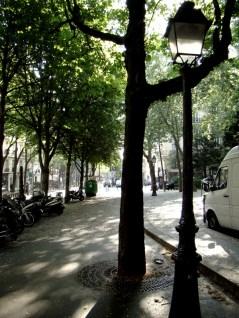 Skwer przy Avenue Junot o poranku