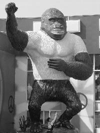 Gorilla_small