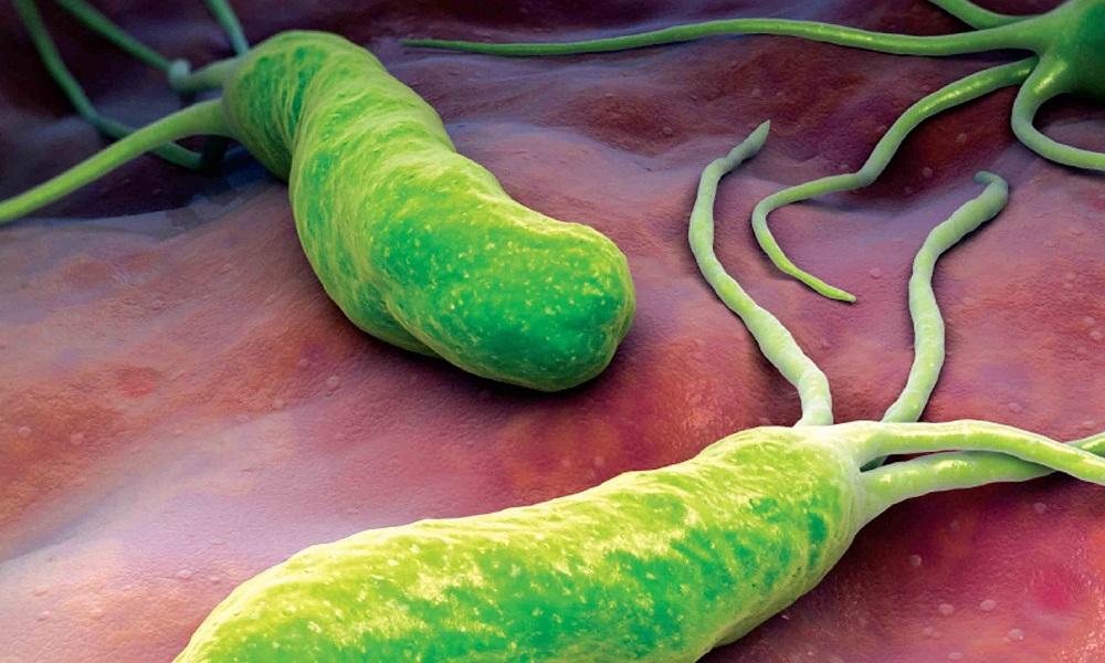 Как вылечить гастрит и панкреатит. Гастрит и панкреатит одновременно || Как лечить гастрит и панкреатит