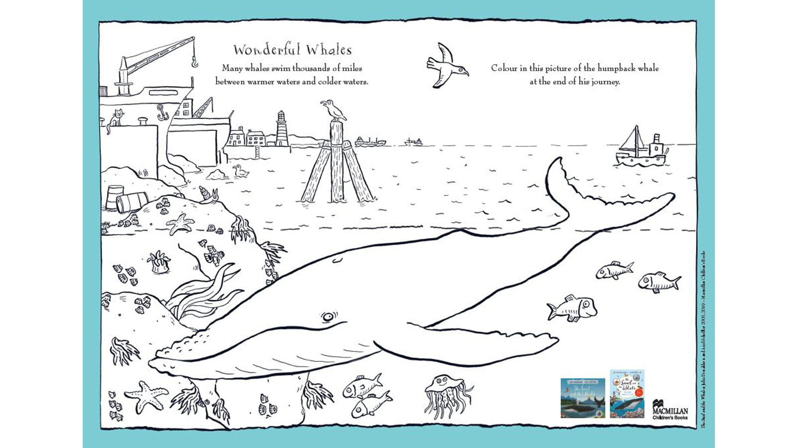 The Snail And The Whale Activities For Kids