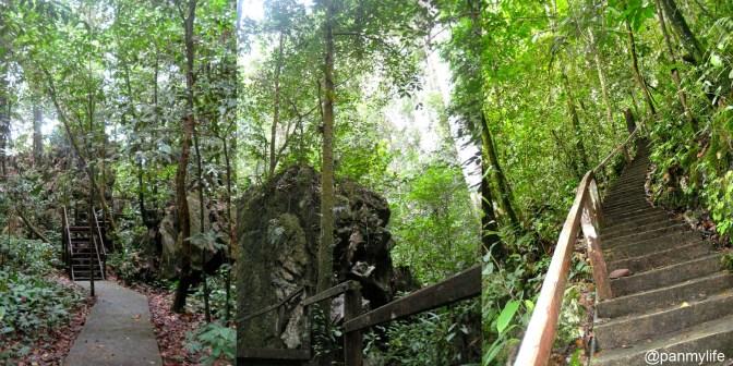 Gunung Mulu National Park, Sarawak, Malaysia