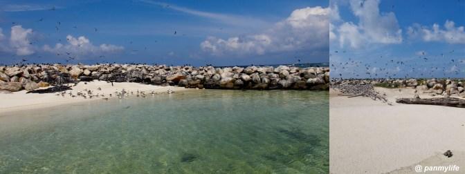 Pulau layang layang, Sabah Malaysia