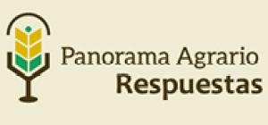Panorama Agrario Respuestas