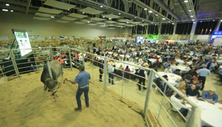 TAM-023-2018.-Inaugura-Gobernador-Congreso-Mundial-de-Ganadería-y-Agricultura-en-Tampico1
