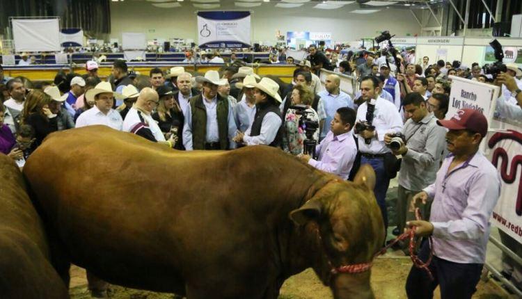 TAM-023-2018.-Inaugura-Gobernador-Congreso-Mundial-de-Ganadería-y-Agricultura-en-Tampico4