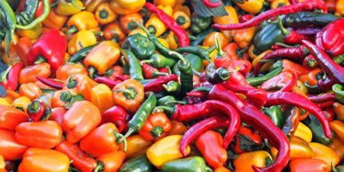 Diversos chiles