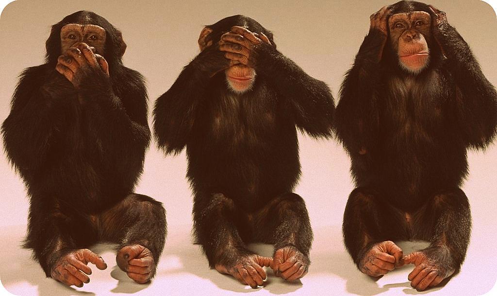 Los monos de Wall Street