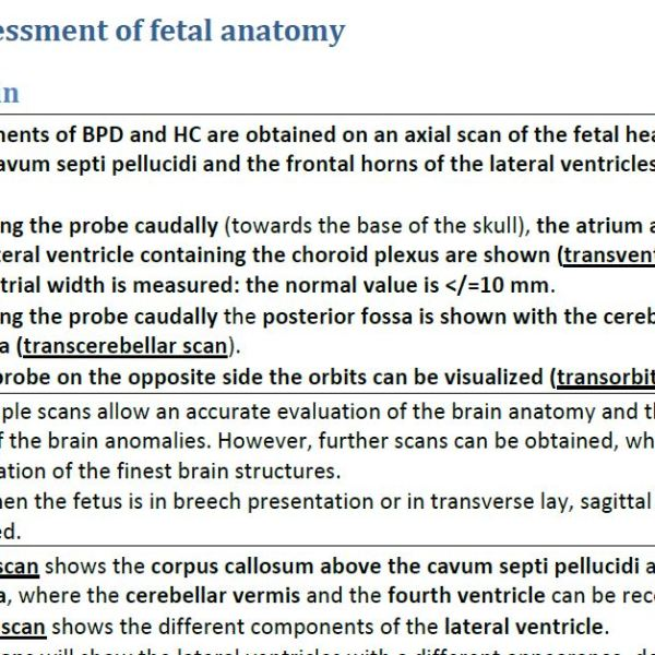 Panorama Scan | Ultrasound Course Explanatory Notes Preview