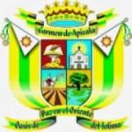 Mejor Alcalde del Tolima 77