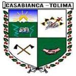 Mejor Alcalde del Tolima 85
