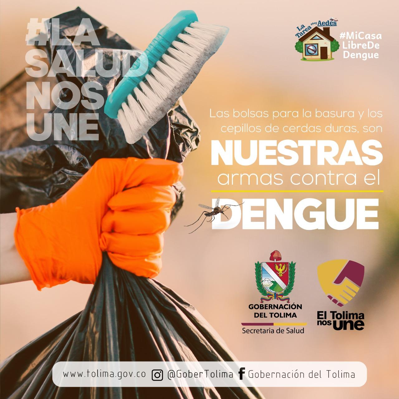 Dengue, un vector latente en el Tolima 1