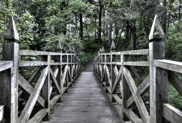 Bridge, Forest (small)