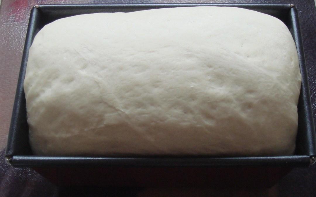¿Cómo se hace Pan Sin Gluten? Parte 2: técnicas básicas espumada o «poolish»