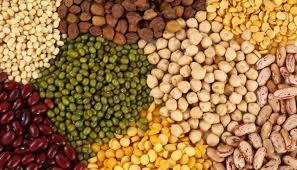 Los antinutrientes en granos y legumbres