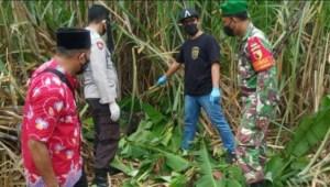 Geger Penemuan Mayat Membusuk Di Kebun Tebu