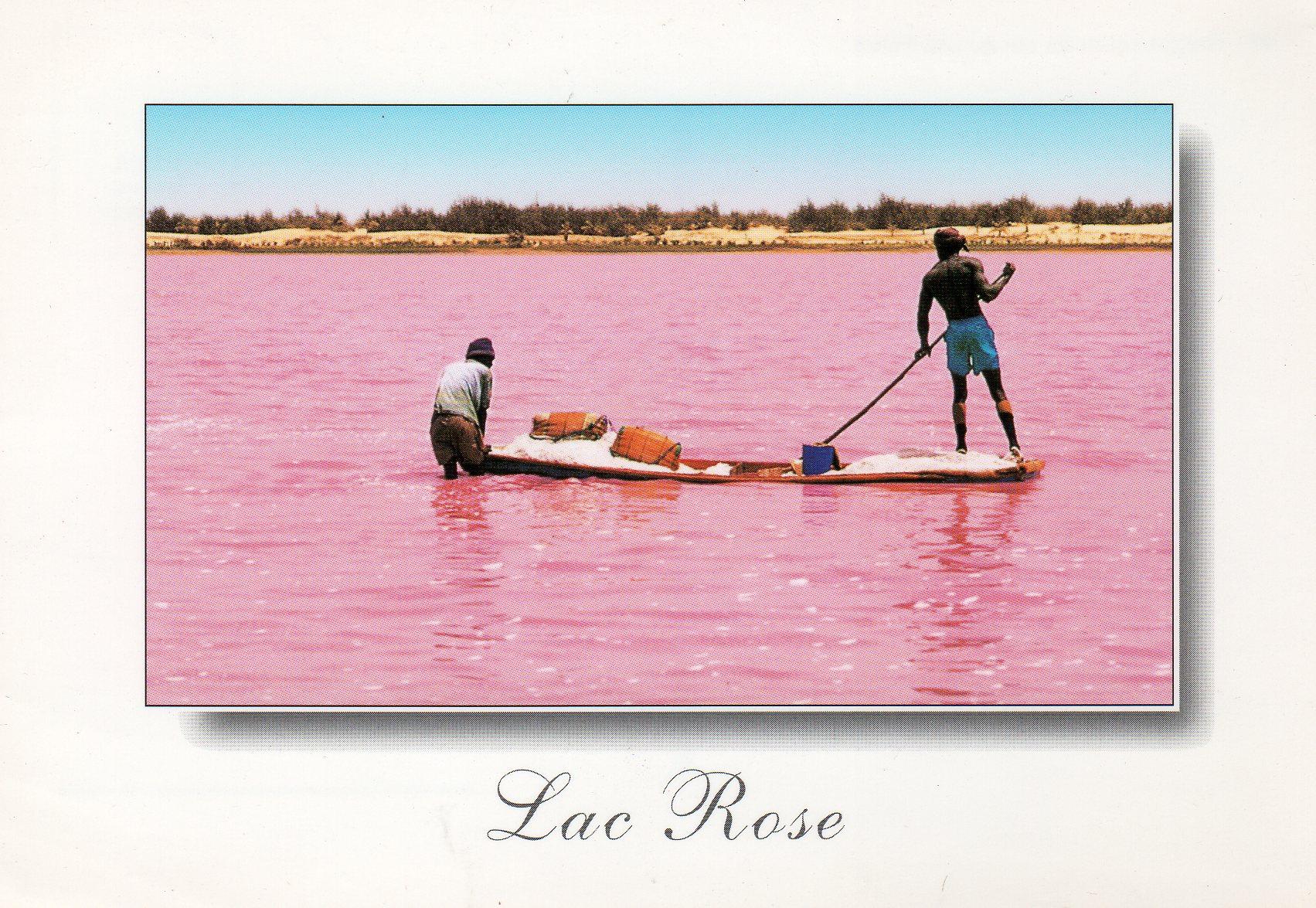 Vibrations Africaines au bord du Lac Rose