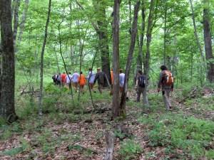 Volunteers Hiking in Panthertown