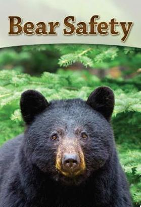 Bear Safety