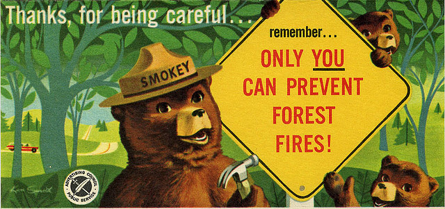 """Smokey Bear Sign """"Only You"""""""
