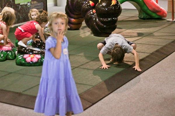 20110817 Butterfly Pavilion 37