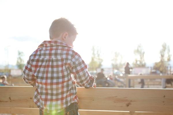20111007 1007 Anderson Farms 84