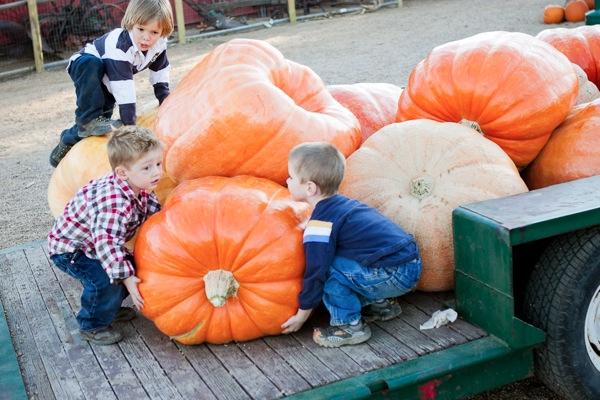 20111007 1007 Anderson Farms 92