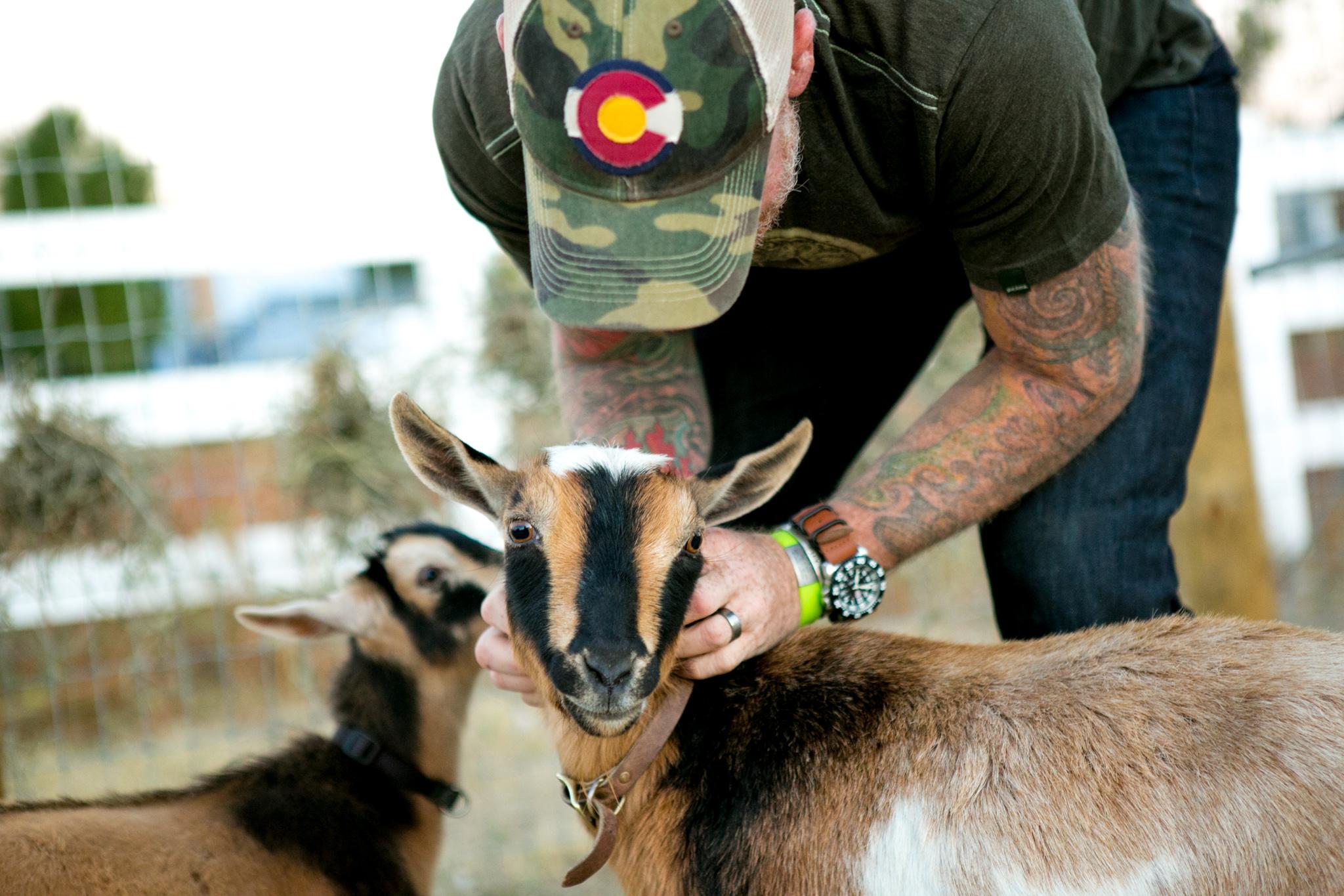 0926 goats-015